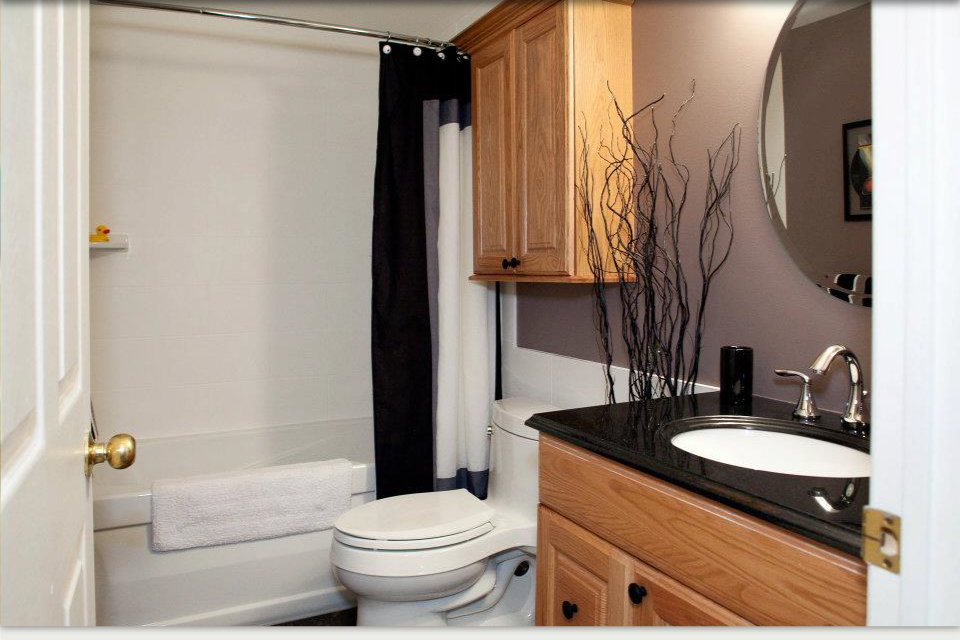 Bath remodel with toilet